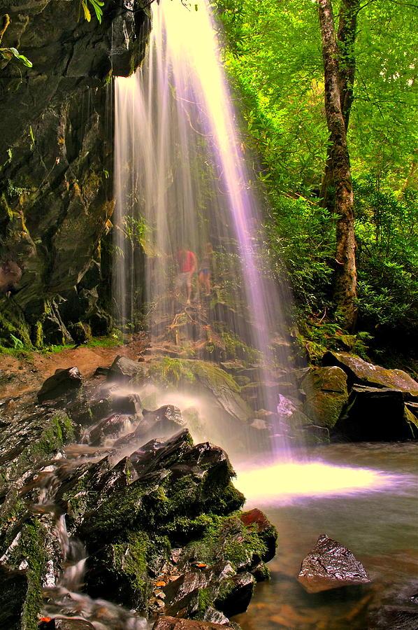 Paradise Trail Photograph