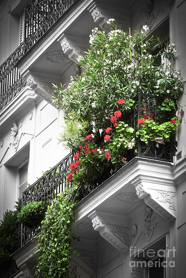 Paris Balcony Photograph  - Paris Balcony Fine Art Print