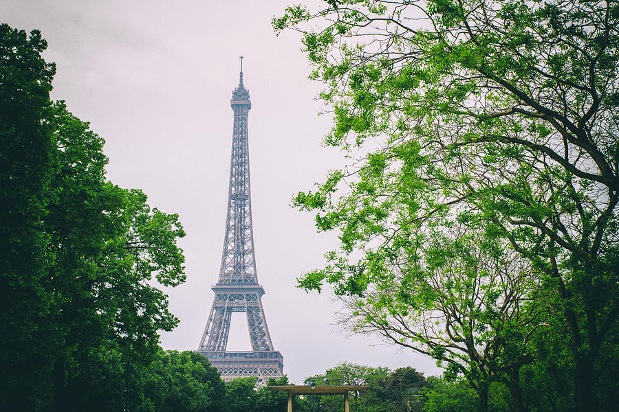 Eiffel Tower Photograph - Paris Eiffel Surrounded By Trees by Georgia Fowler