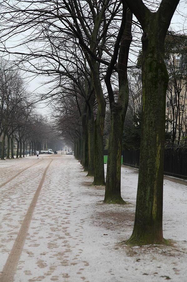 Paris France - Street Scenes - 011326 Photograph