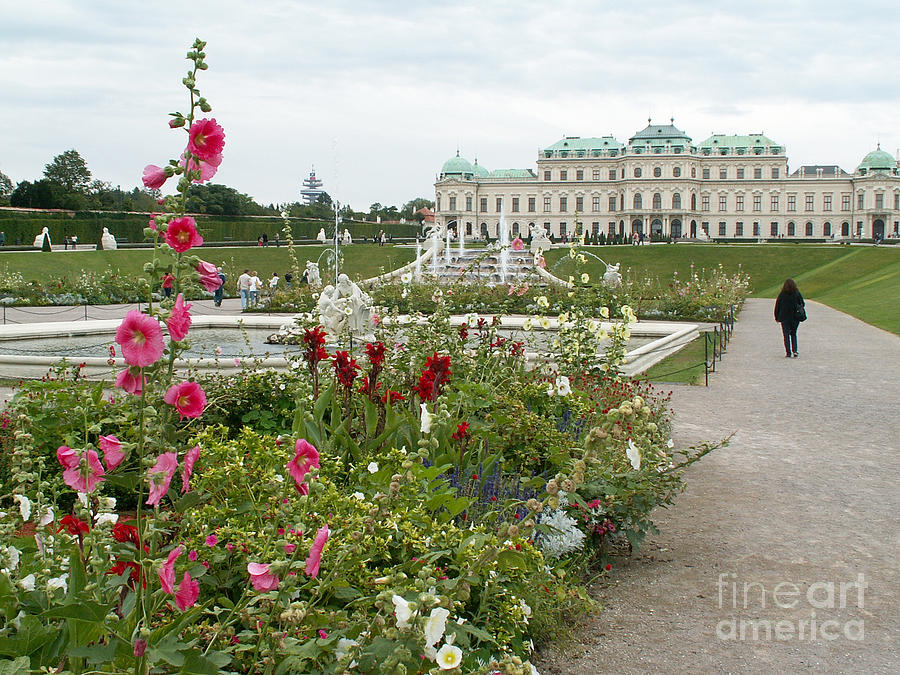 Park Of Vienna Photograph