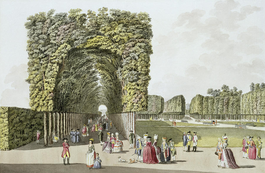 Part Of The Garden At Ausgarten Drawing
