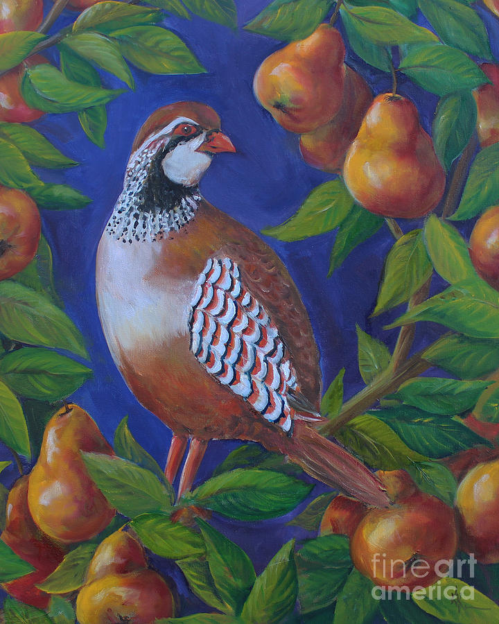 Partridge in a pear tree