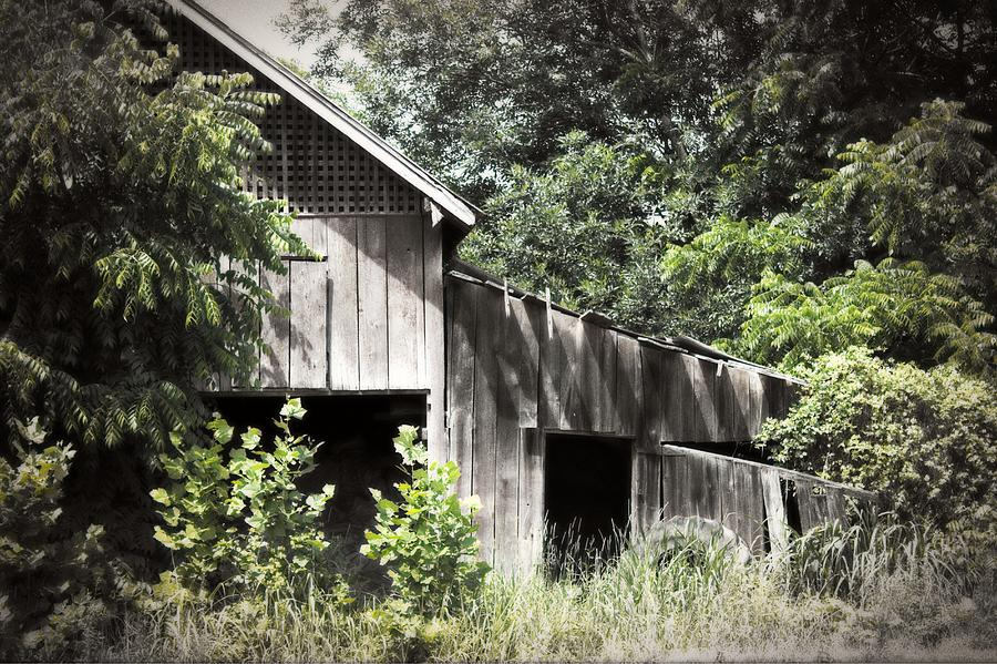 Building Photograph - Passing Of Time by Tom Gari Gallery-Three-Photography