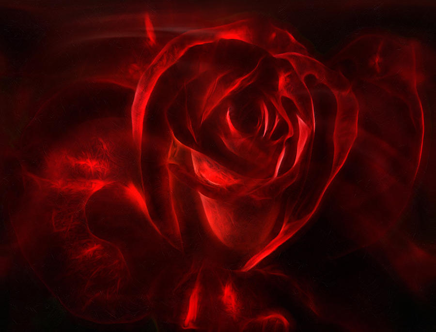 Passion Rose Bathed In Red - Abstract Realism Digital Art