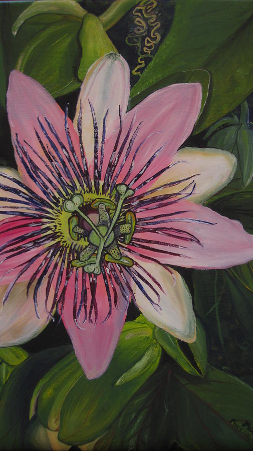Passionflower Painting