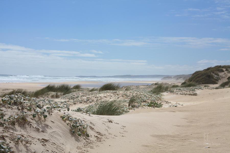 Western Australia Photograph - Pastel Dunes by Elaine Teague