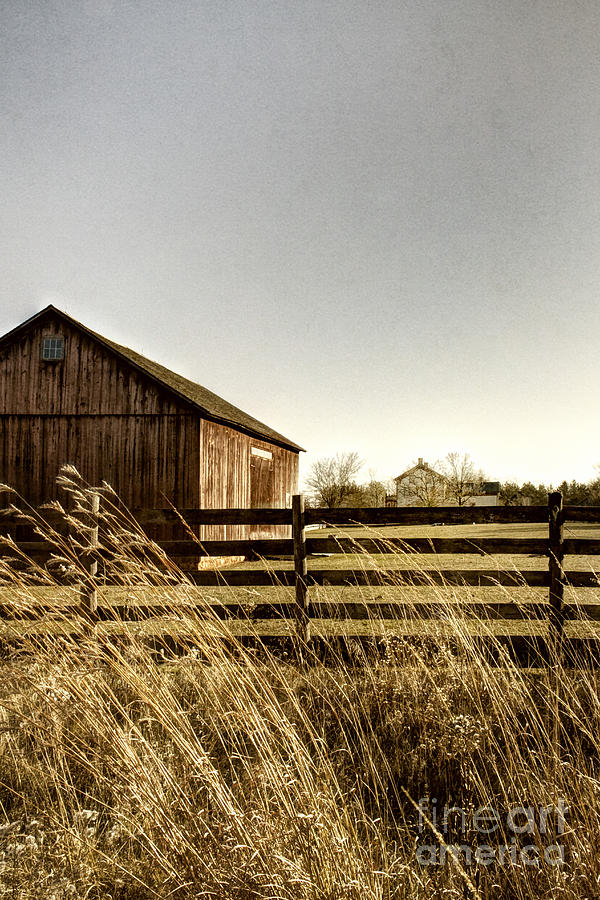 Pasture Photograph