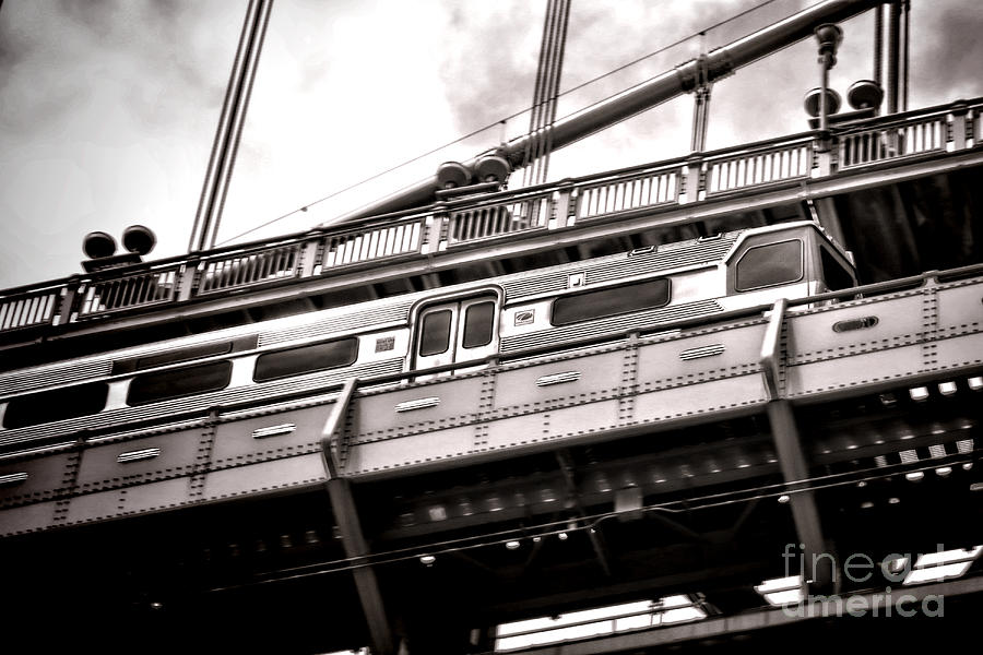 Patco Photograph - Patco by Olivier Le Queinec
