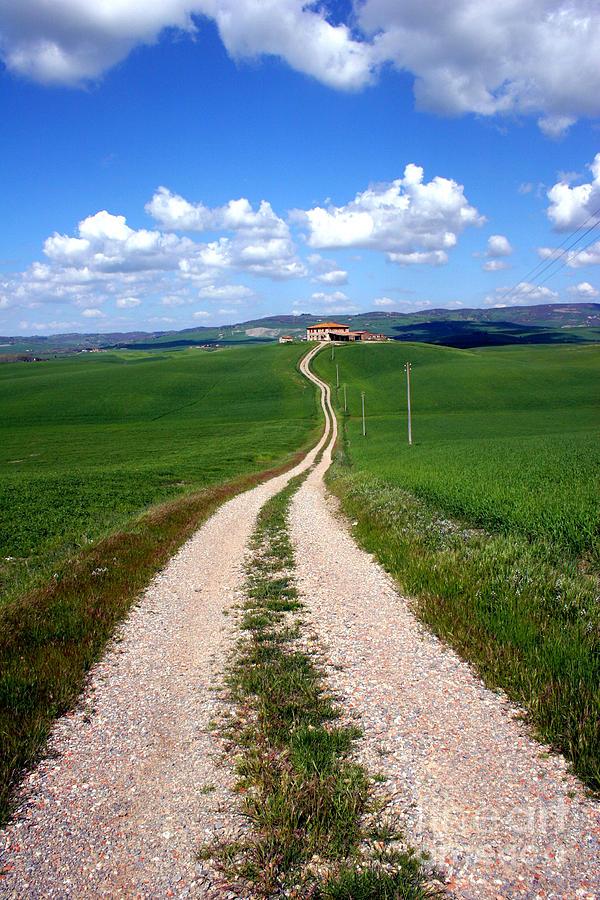 Path To The Horizon Photograph
