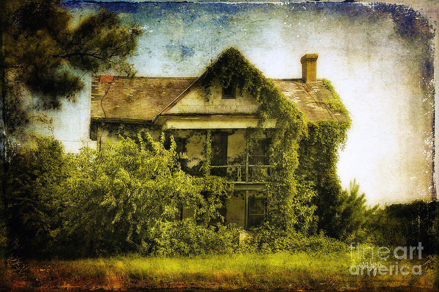 House Photograph - Patiently Waiting by Lois Bryan