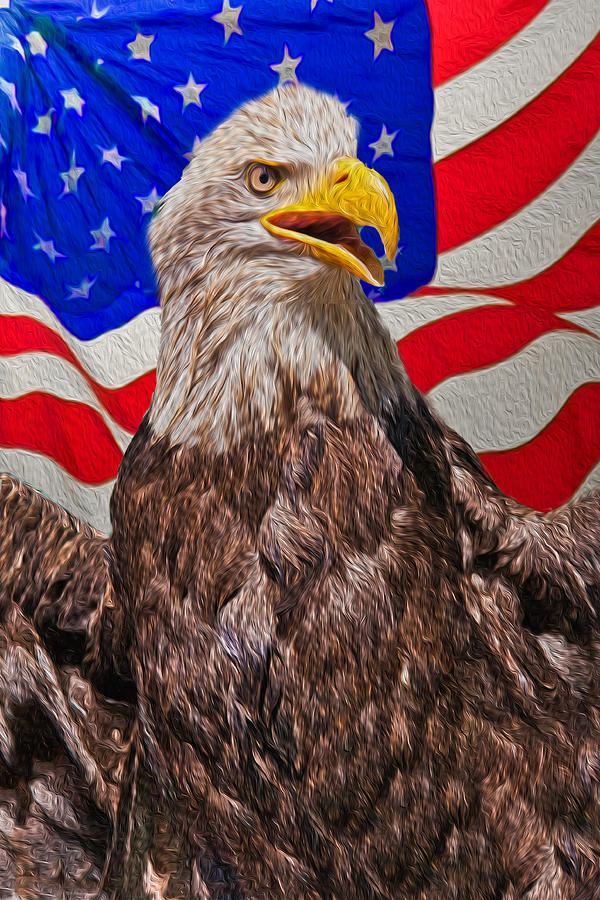Patriotic Photograph - Patriot by Matthew Bamberg