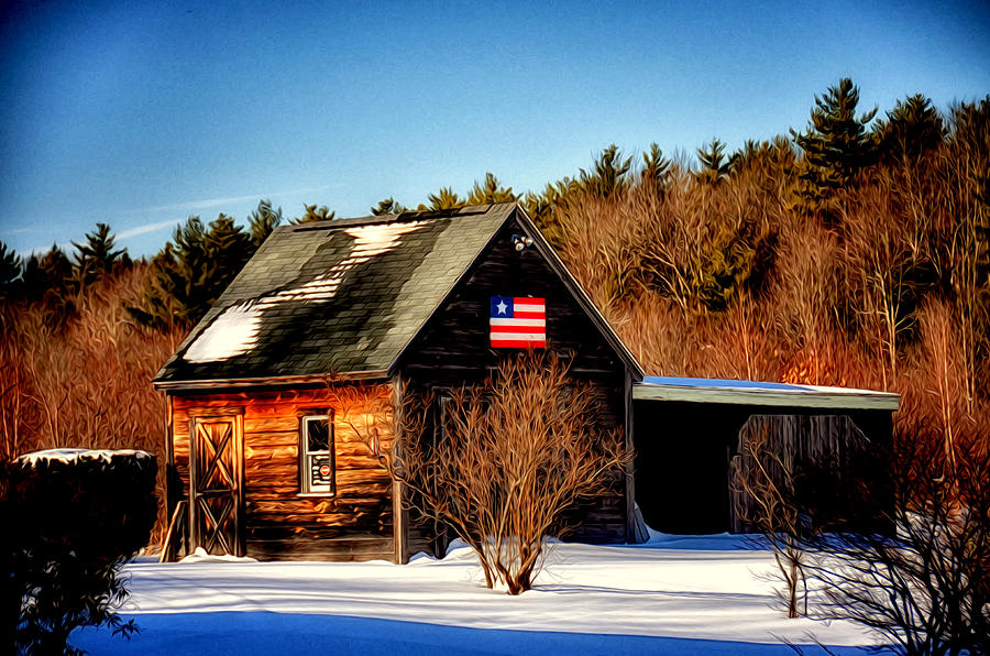 Nature Photograph - Patriot Pride by Tricia Marchlik
