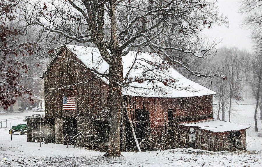 Tobacco Barn.  Burly Tobacco.  Snowy Scene.  Barn In Snow.  American Flag.   Farm Image.  Farm Print  Barn Photograph  Winter Snow Print Barn Art. American Flag Country.. Robertson County Tennessee American Flag In Snow. Run Down Barn Agriculture. Barn Architecture. Cold Image.  Photograph - Patriotic Tobacco Barn by Debbie Green