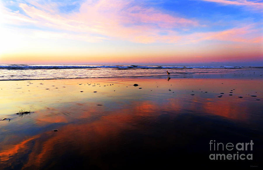Pawleys Sunrise Reflection Photograph  - Pawleys Sunrise Reflection Fine Art Print
