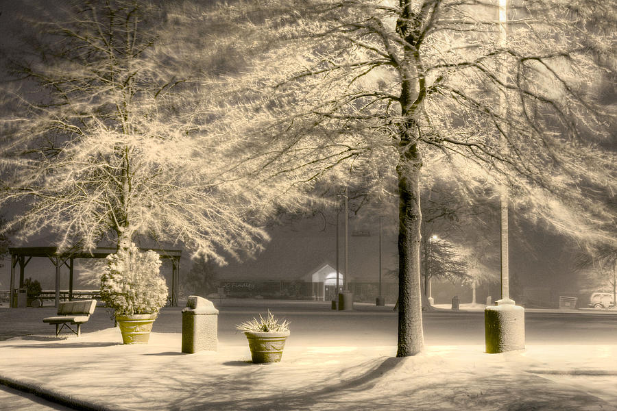 Peaceful Blizzard Photograph  - Peaceful Blizzard Fine Art Print