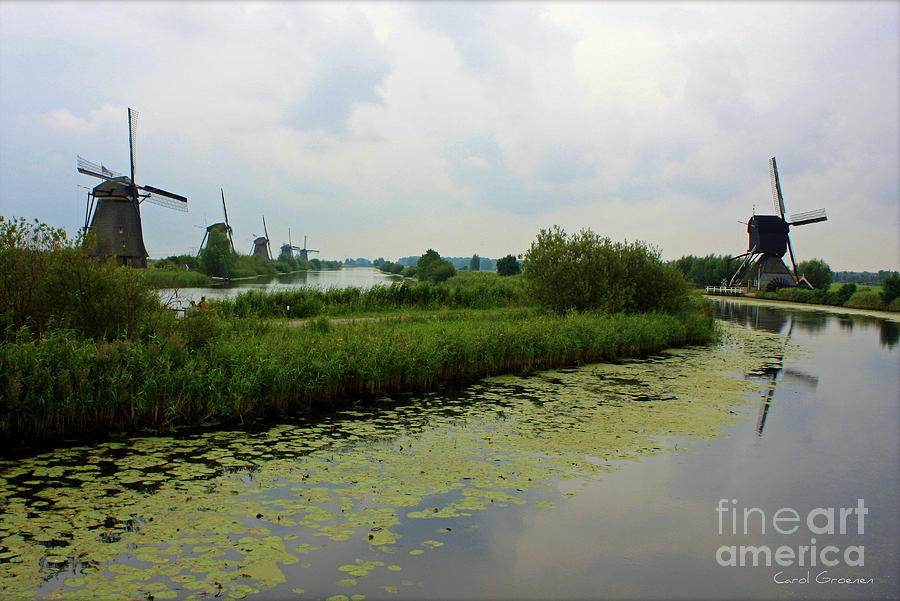 Peaceful Kinderdijk Photograph  - Peaceful Kinderdijk Fine Art Print