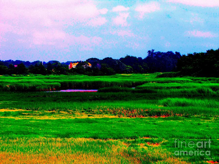 Peaceful Marsh Photograph  - Peaceful Marsh Fine Art Print