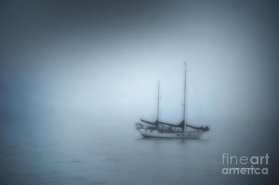 Peaceful Sailboat On A Foggy Morning From The Book My Ocean Photograph
