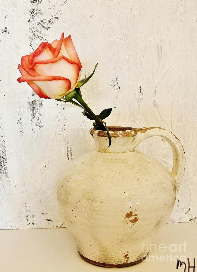 Peach Trim Rose In Pottery Photograph