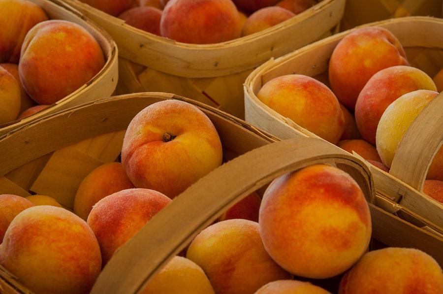 Peaches Jones Nude Photos 41
