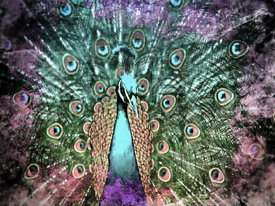 Peacock Art Photograph
