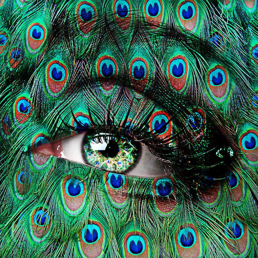 Peacock Photograph by Yosi Cupano