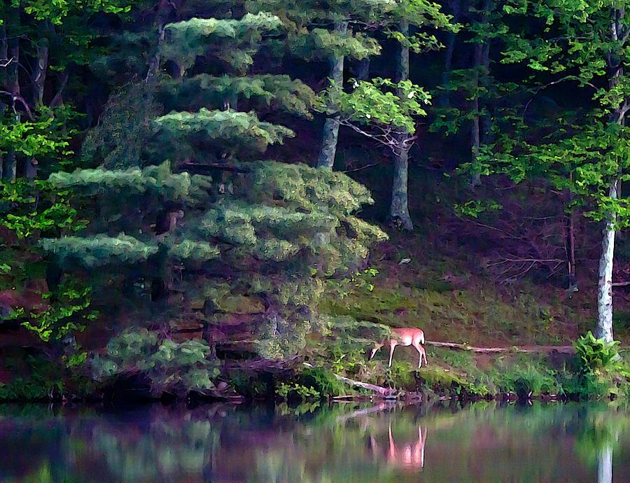 Deer Painting - Peaks Of Otter Deer by John Haldane