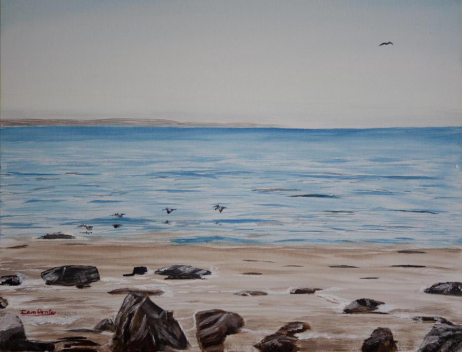 Pelicans At El Capitan Painting