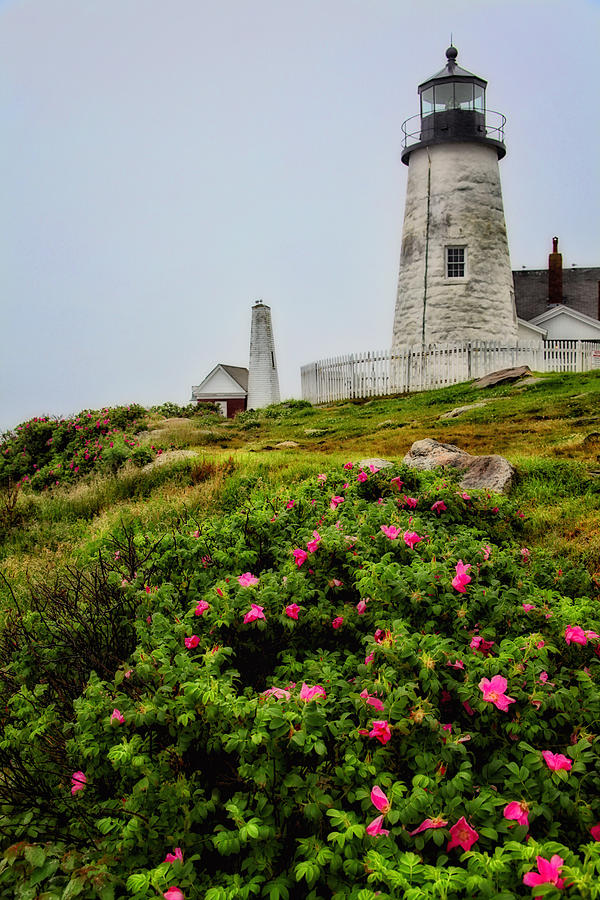 Lighthouse Photograph - Pemaquid Point by Karol Livote