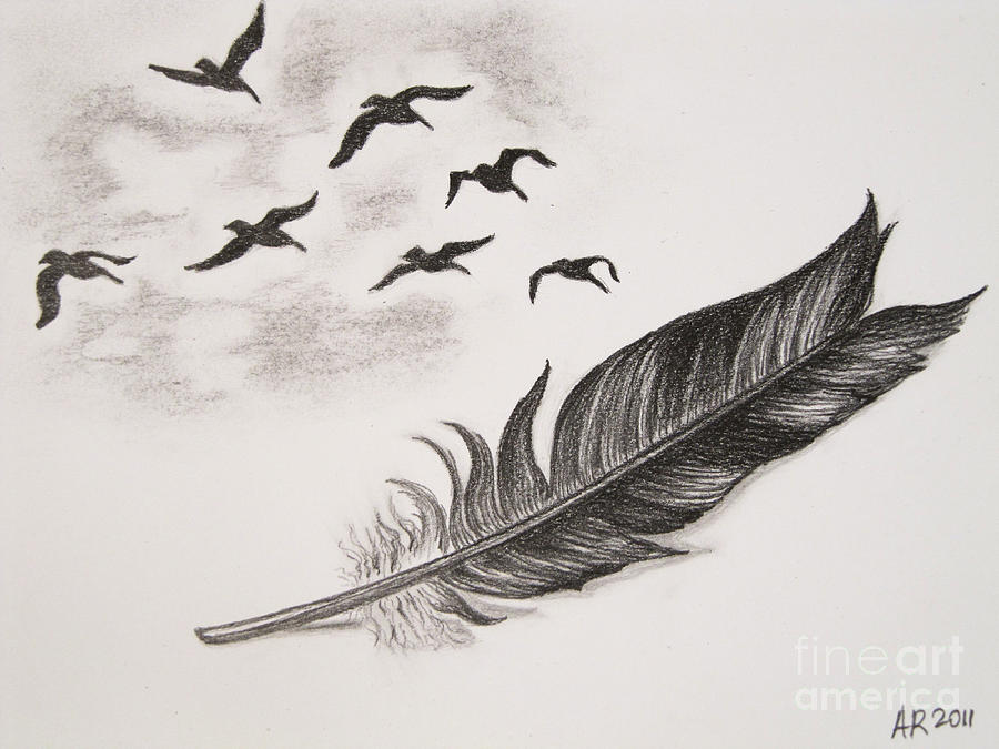 how to draw a realistic feather