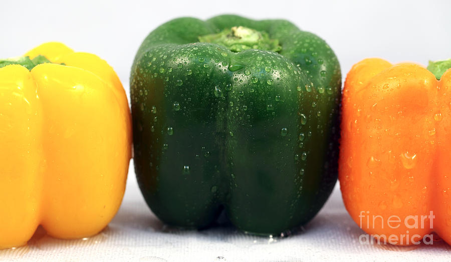 Pepper Colors Photograph