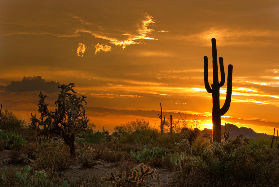 Peralta Arizona Sunset Photograph
