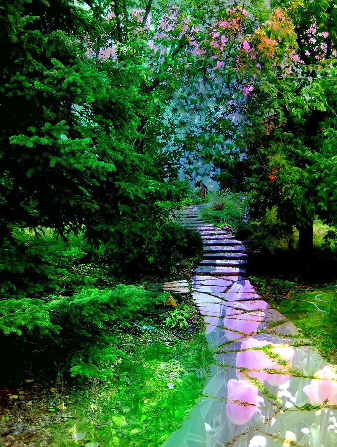 Path Photograph - Perhaps It Will Come by Shirley Sirois