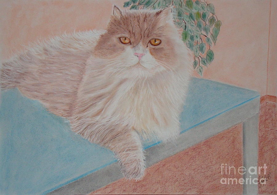 Cat Painting - Persian Cat by Cybele Chaves