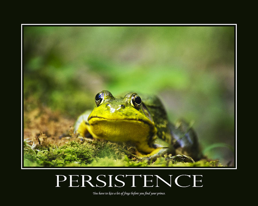 Persistence Inspirational Motivational Poster Art Photograph