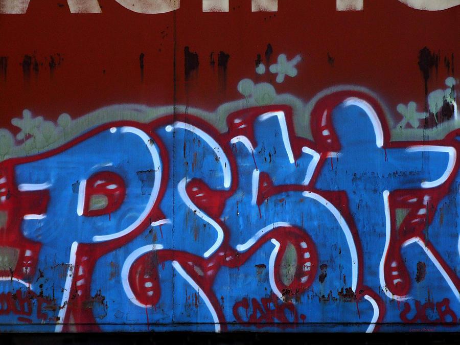 Graffiti Photograph - Pest by Donna Blackhall