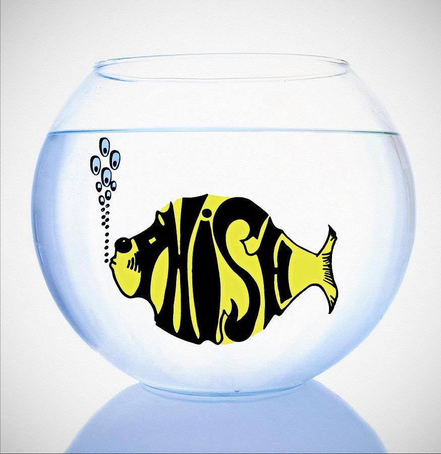 Phish  Photograph - Phish Bowl by Bill Cannon