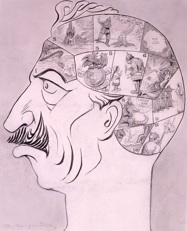 Phrenological Chart Of The German Drawing