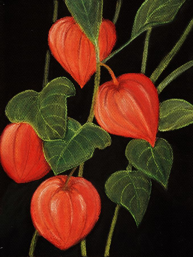 Physalis Painting