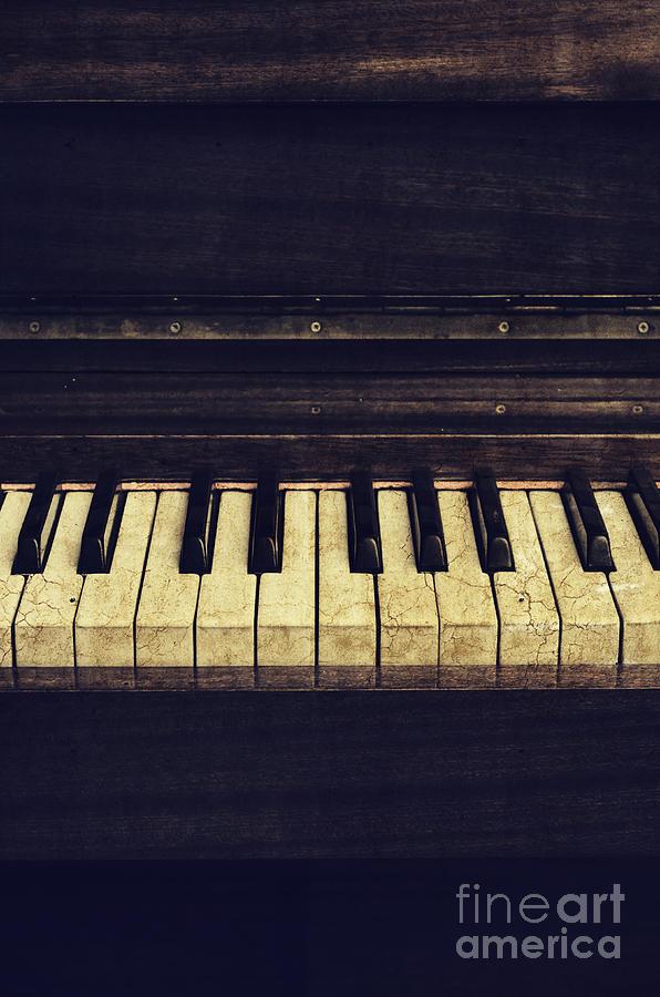 Piano Pyrography - Piano by Jelena Jovanovic