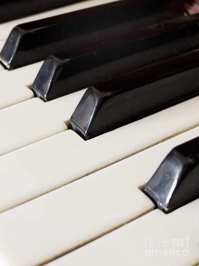 Piano Pyrography - Piano Keys by Jelena Jovanovic