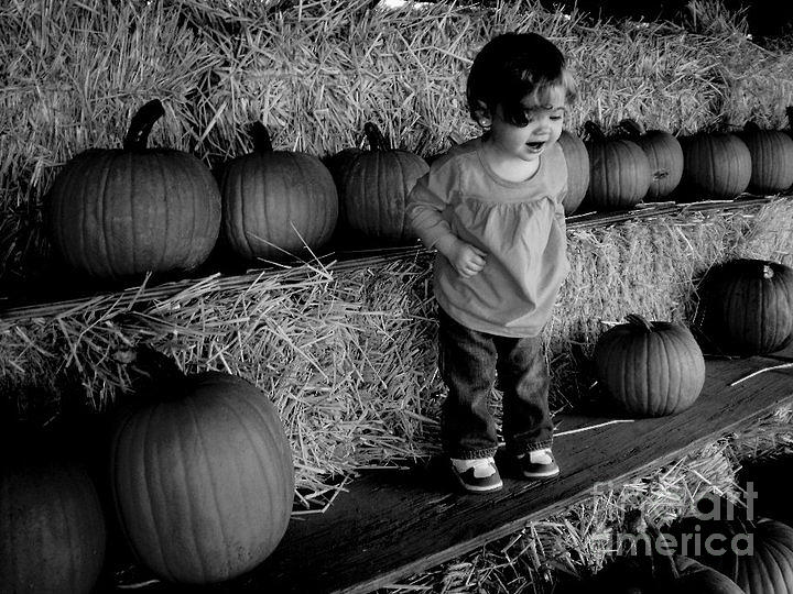 Pumpkin Photograph - Pick Of The Day by Janine Riley