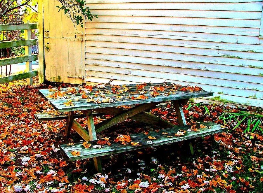 Picnic Table In Autumn Photograph