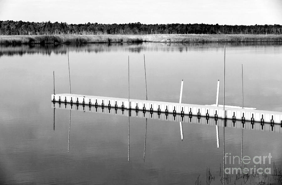 Pine Barrens Dock Photograph