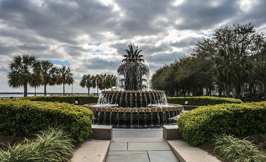 Pineapple Fountain Photograph  - Pineapple Fountain Fine Art Print