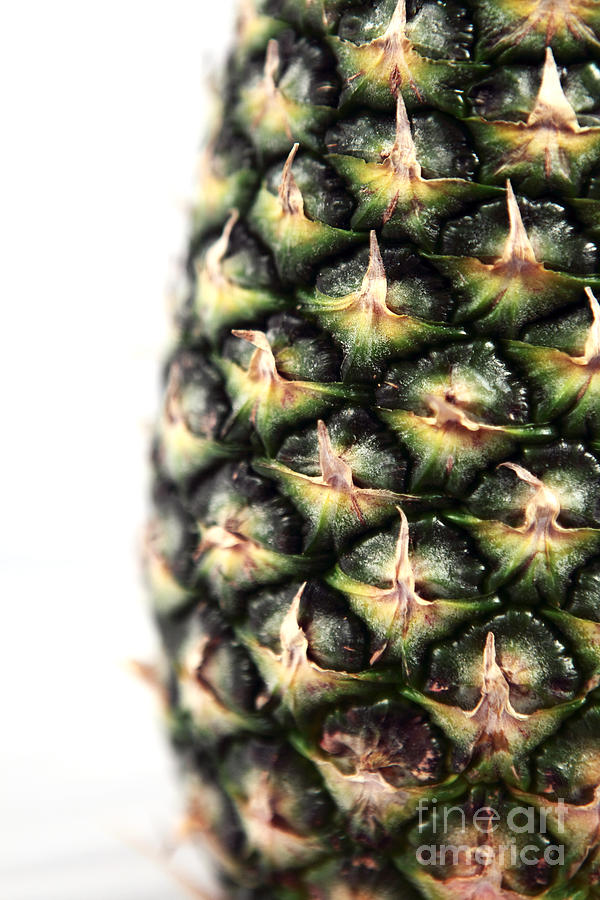 Pineapple Half Photograph  - Pineapple Half Fine Art Print