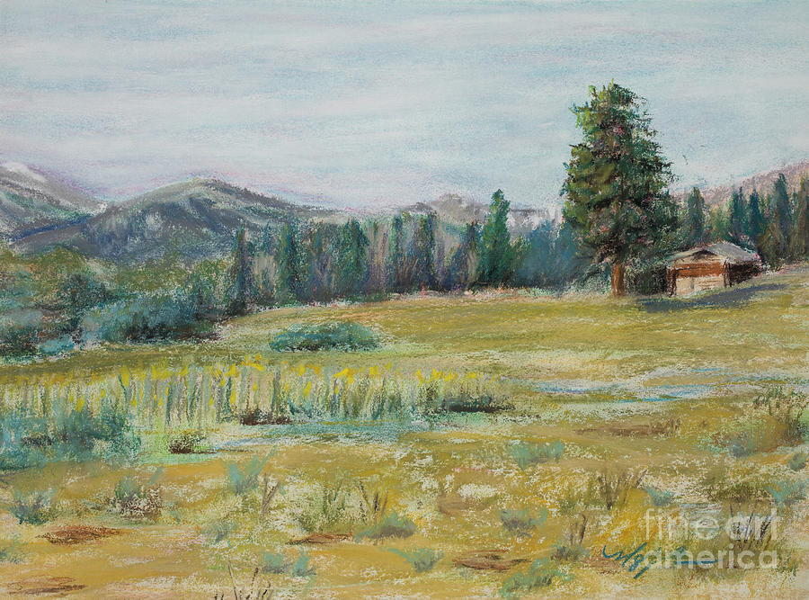 Colorado Mountains Painting - Pingree Park by Mary Benke