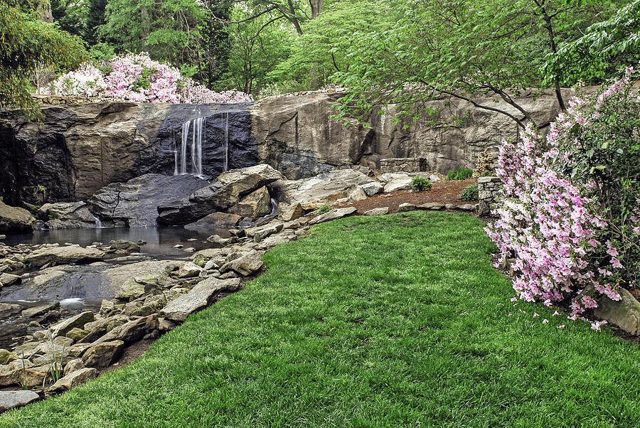 pink and green rock quarry garden in cleveland park greenville sc photograph by willie harper