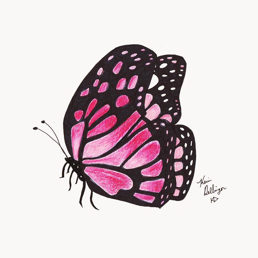 Butterfly Drawings With Color Pink The gallery for -->...